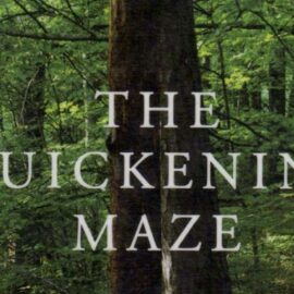 """""""The maze of a life with no way out, paths taken, places been"""""""